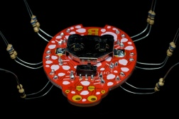 "Boldport Club Project ""The Lady"""